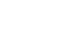 Prairie Monarch Bison